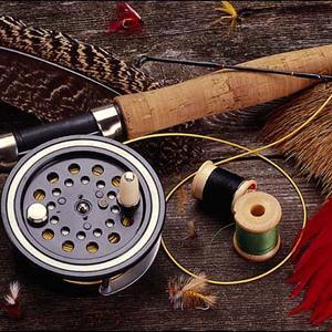 Охотничьи и рыболовные магазины Павино